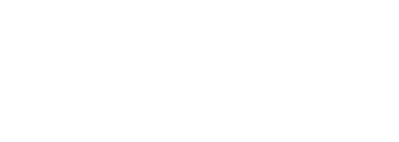 Christiane Herzog Stiftung
